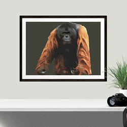Orangutan by Maxine Walter