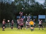 Dunstablians Rugby Club