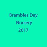 Brambles Day Nursery portfolio