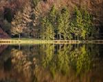 The Langley Reservoirs portfolio