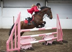 LINK TO - Barton EC Sun_11th_Sept '11 Unaff.ShowJumping portfolio