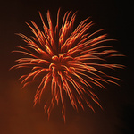 Fire Element portfolio