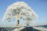 Severe Winter 2010/2011