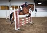 LINKS TO - Equestrian Events June'12 portfolio