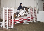 LINK TO - Barton EC, Wed_17th_Aug_'11 WedShowJumping portfolio