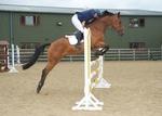 LINK_TO - EquestrianEvents September'13 portfolio