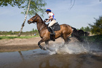 Equestrian Competitions portfolio