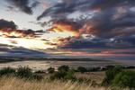 Brearley & Co Landscape portfolio