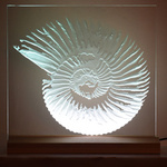 Glass portfolio