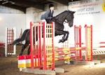 LINK TO - Equestrian Events Nov'12 portfolio