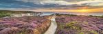 Alum Bay and The Needles panoramics portfolio