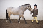 LINK TO - Barton_EC Sun_9th_Oct_'11 WinterRidingClub MorningInHandClasses portfolio