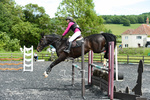 Meon Riding Club Arena Eventing portfolio