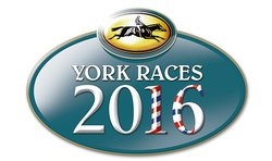 York Racecourse Photos 2016 Season portfolio
