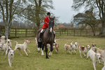 Hursley Hambledon Hunt - Children's Meet portfolio