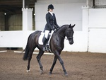 LINKS TO - Equestrian Events Dec '11 portfolio