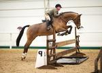 LINKS TO - Equestrian Events Feb'13 portfolio