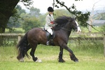 LINK TO - Barton EC, Sunday_31st_July_'11 Summer_Riding_Club portfolio