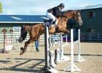 LINKS TO - Equestrian Events June'13 portfolio