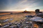 Dartmoor portfolio