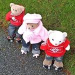 Skating Bears portfolio