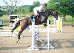 LINKS TO - Equestrian Events August'13 portfolio