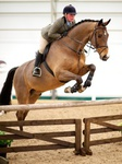 Equestrian Events 2013