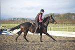 LINK TO - BA Equestrian 21st November '10 portfolio