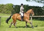 LINK TO - Barton EC, Sun_1st_May_'11 Summer_Riding_Club portfolio