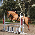 The NSEA Windsor Qualifier at Bicton 16-02-17