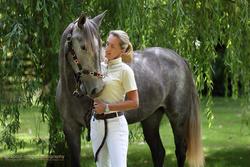 Paula & Horses portfolio