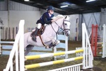 LINK TO - Barton EC, Wed_7th_Sept'11 Wed_Night_ShowJumping portfolio
