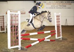 LINK TO - Barton EC, Wed_10th_Aug'11 Show_Jumping portfolio