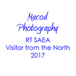 Visitor From the North 2017 portfolio