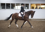 LINK TO - Barton_EC Sat_8th_Oct_'11 Dressage portfolio