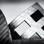 The Geometry Collections portfolio