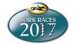 York Racecourse Photos 2017 Season portfolio