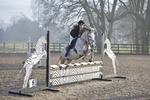 Bicton Pony BS & Unaffiliated Club SJ 17-02-17