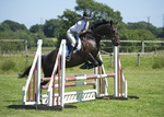 LINKS TO - Equestrian Events July '11 portfolio