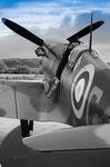 Spitfire Experience portfolio