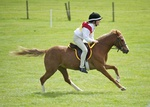 LINK TO - LancasterPonyClub Prince_Philip_Cup Mounted_Games 22nd_May_'11 portfolio