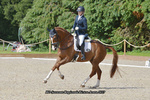 British Dressage Regional Finals Monday 17-07-17 portfolio