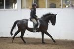 LINK TO - Barton EC, Saturday_16th_July_'11 Horse_&_Tack_Sale portfolio