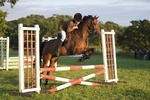 LINK TO - Barton EC, Wednesday_13th_July_'11 Wed_Night_Show_Jumping portfolio
