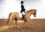 LINKS TO - Equestrian Events March'13 portfolio