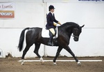 LINK TO - Barton EC, Sat_16th_April_'11 T'Blazers_Dressage_Quals portfolio