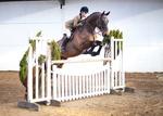 LINKS TO - Equestrian Events April'13 portfolio