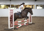 LINK TO - Barton EC Wednesday_15th_June_'11 WedNightShowJumping portfolio