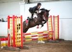 LINKS TO - Equestrian Events July'13 portfolio