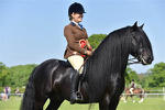 NPS Wessex Area 24 Summer Show 20-05-2018